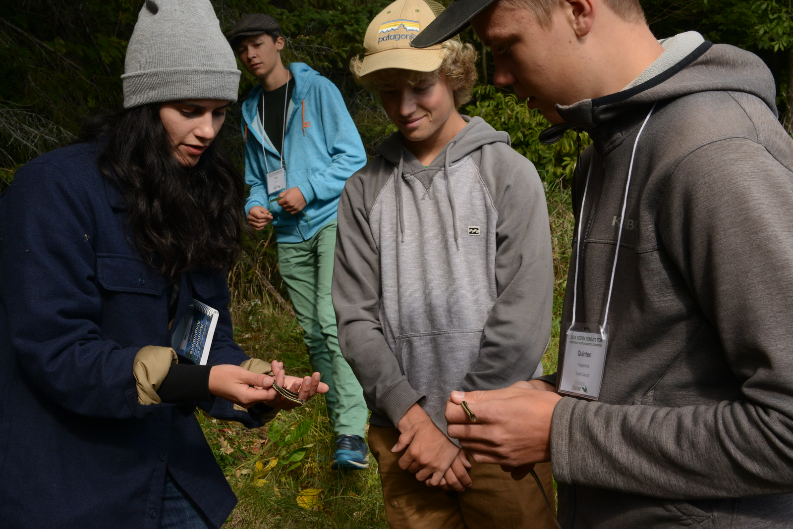 Participants find and observe eastern gartersnakes in the Secret Lives of Salamanders workshop with Stephanie Muckle and Smera Sukumar © Noah Cole